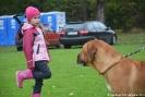 Wystawa psów rasowych w Jaśle